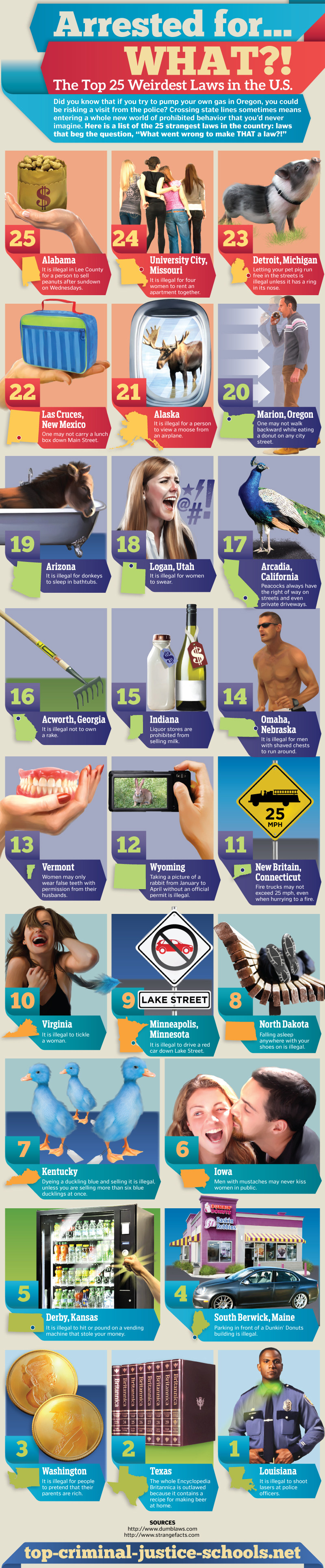 The-Top-25-Weirdest-Laws-in-the-US-Infographic